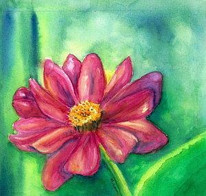 pink-gerber-daisy-mary-launi