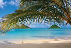 hawaiian-beach
