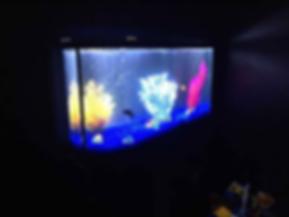 Screen Shot 2019-03-20 at 3.03.53 PM.png