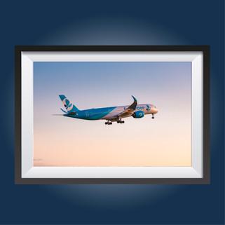 FBU A359 - REF:986