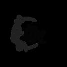 logo filigrane transparent copie.png