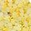 Thumbnail: Lemon Fruit Slices 🍋