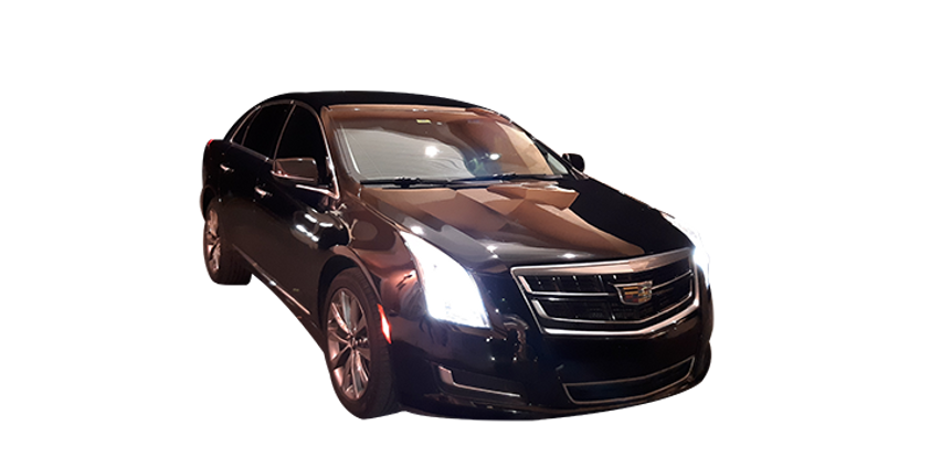 Caddy Trans Sm.png