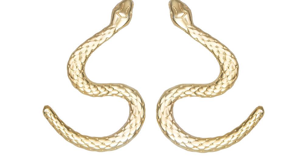 Path Earrings