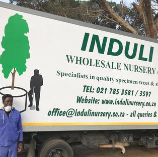 Happy Friday from Induli