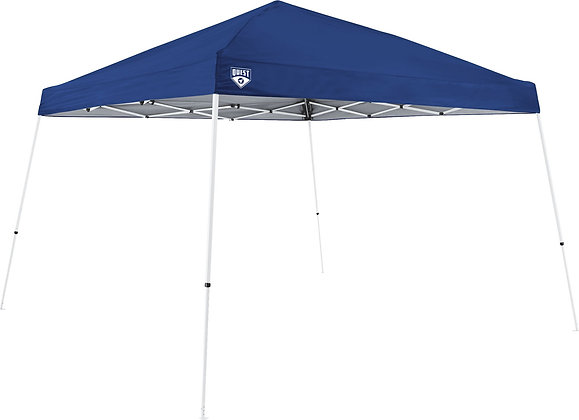 10x10 Instant Up Canopy Tent