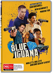 BlueIguanaWeb.jpg