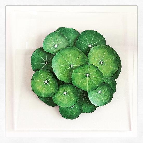 Lise Rathonie - Soleil Vert / Botanic #1