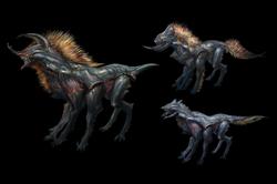 Beetle hounds