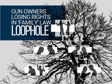 Gun Owners Losing Rights in 'Family' Law Loophole