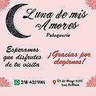 Luna_de_mis_amores_Peluquería.jfif