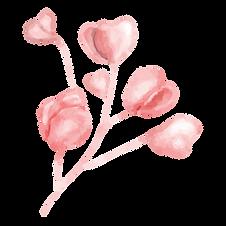 16 Flower Watercolor.png