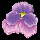 26 Violet Flower.png