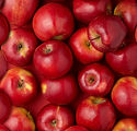 Red apples.jpg