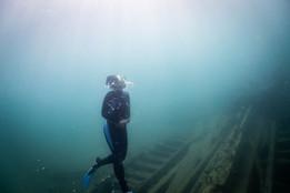 TBNMS_Carina Snorkeling Monohansett_Nick