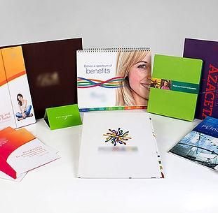 Marketing Materials, Printer, Mentor, Ohio, Lake Blue INC