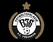 B36 logo.webp