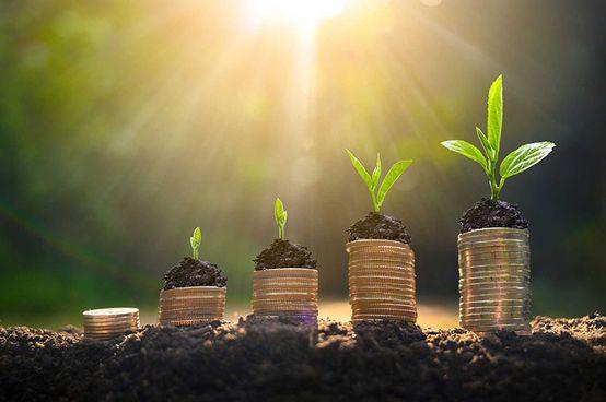 Assurances et investissements