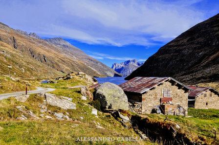 Alpe Mottala (Val Di Lei)