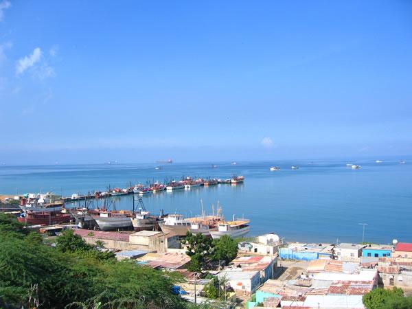 Venezuela VC Punto Fijo 2008-16