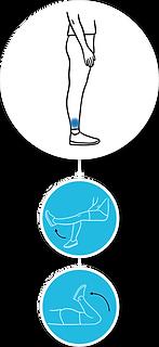 Knee range of motion, quality of movement rehabilitation