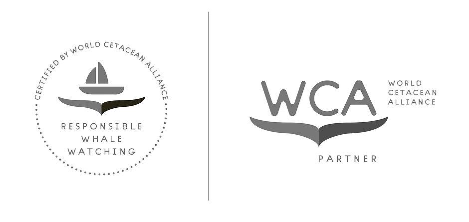 WCA RWW_2020.jpg