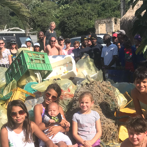 Dobela Down Beach Clean-Up  300618