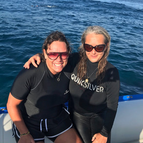 THE EXPERIENCE OF A LIFETIME, MY JOURNEY WITH THE DOLPHINS OF PONTA