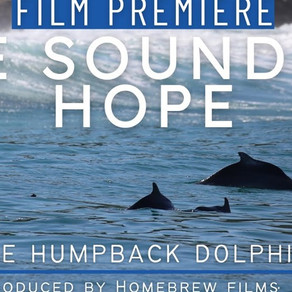 Humpback Dolphins - The Sound of Hope....