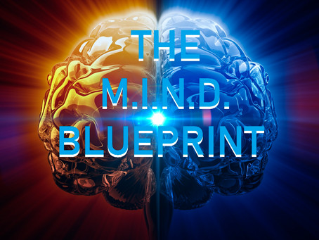 The M.I.N.D. Blueprint