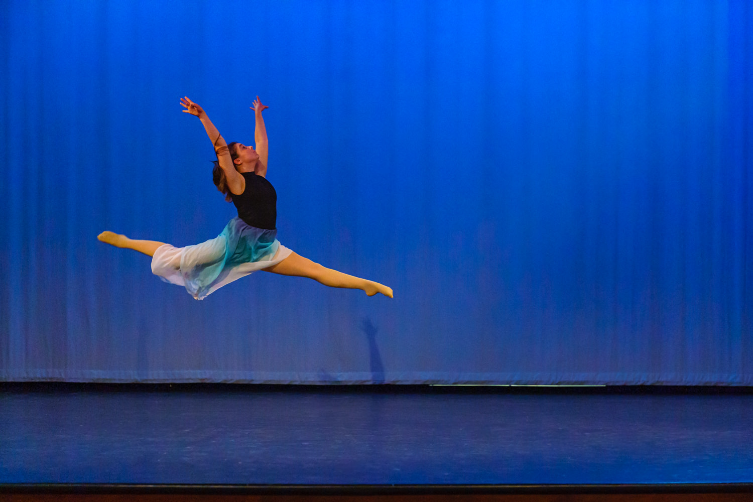 LUHS Winter Dance Recital 2019