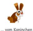 kaninchen.PNG