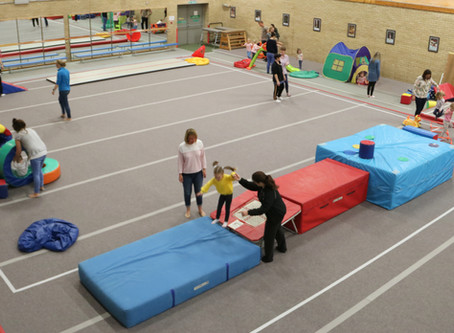 Exciting news for Recreational Gymnasts!