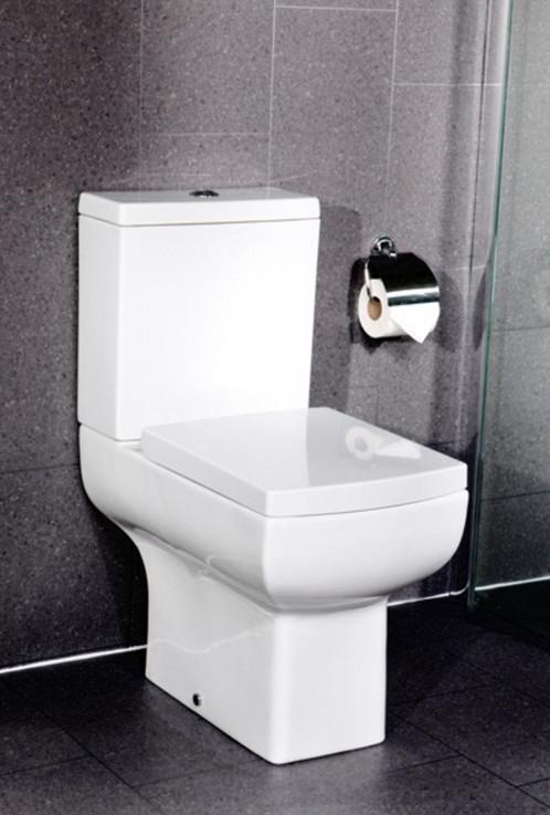 Daisy Lou Close Coupled WC