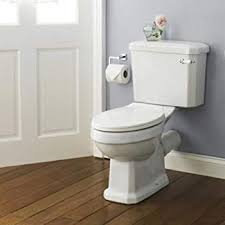 Carlton Comfort Height WC