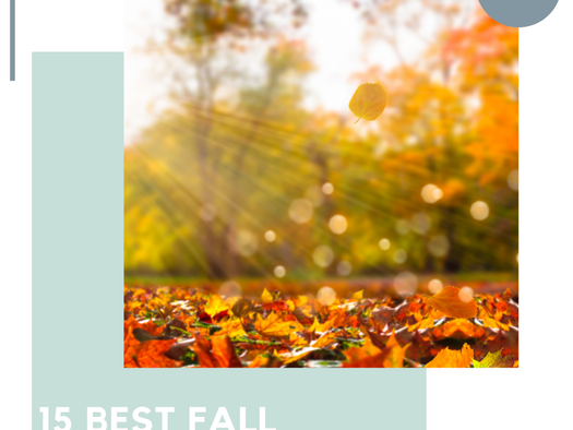 15 Awesome Fall Activities in Wisconsin