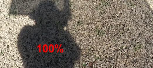 0%, 80%, 90% and 100% illustration.