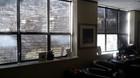 Commercial Roller Blinds for Office windows.