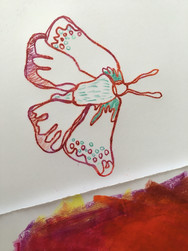 Butterfly monoprint with crayons
