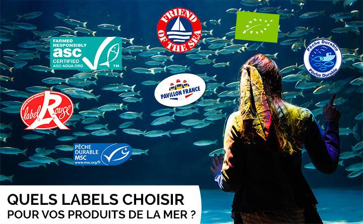Quels Labels Pêche Durable Choisir ?