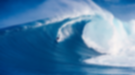 Surfing 1.png