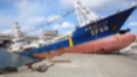 Ships 4.png