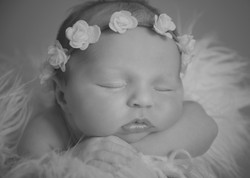 Newborn Photography, Southend on sea