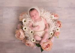 Best pictures of newborns