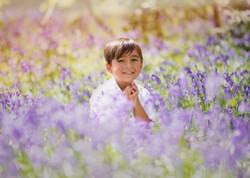 Bluebells Photographer Essex