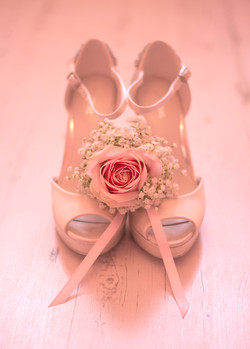 Wedding, Party Photographer, Essex