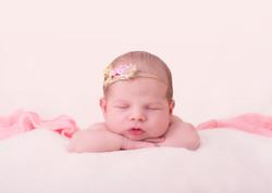 Newborn prop photos, Essex
