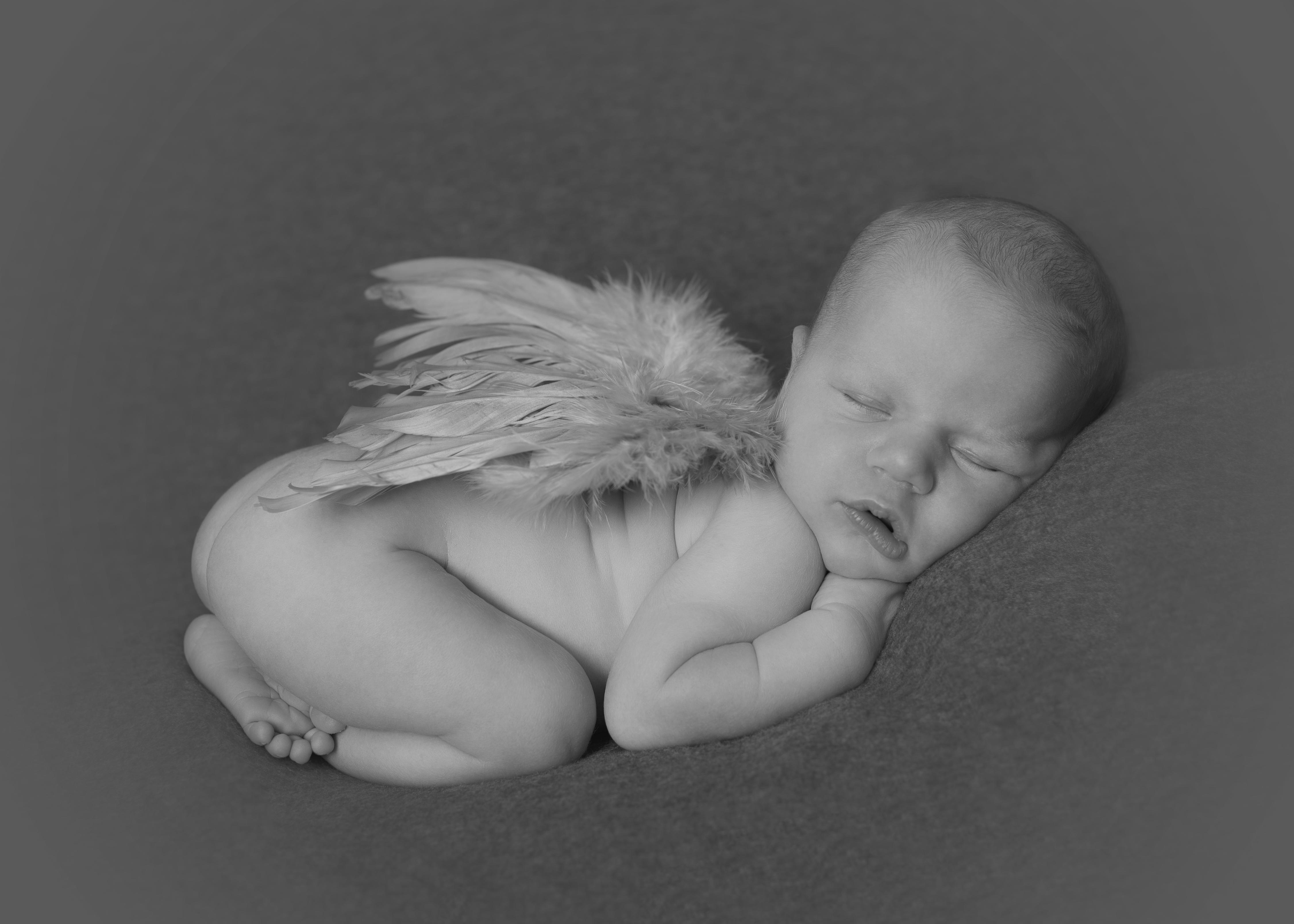 Baby Essex Photo