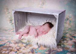 Newborn Photography, Pitsea