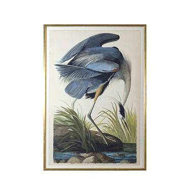 Blue Heron Artwork